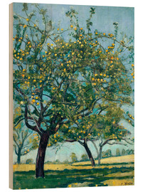Cuadro de madera  Paddock with apple trees - Ferdinand Hodler
