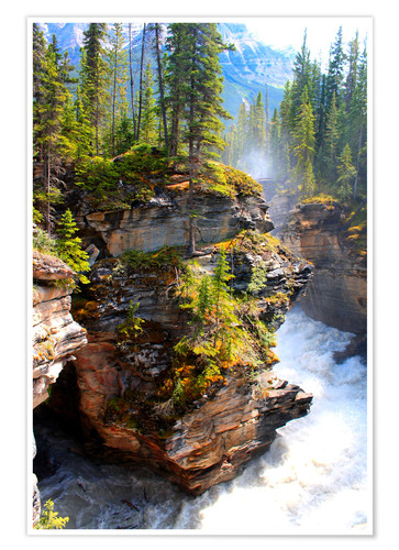 Póster Pure wilderness at Maligne Canyon in Jasper National Park, Canada