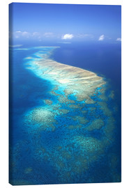 Lienzo  Great Barrier Reef Marine Park - David Wall
