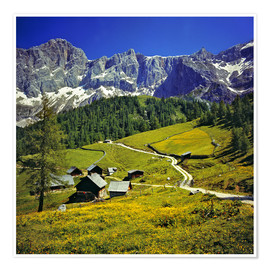 Póster  A pasture in the Dachstein Alps - Ric Ergenbright