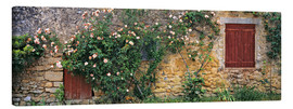 Lienzo  Climbing roses cover an old stone wall - Ric Ergenbright