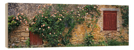 Madera  Climbing roses cover an old stone wall - Ric Ergenbright
