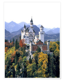 Póster  Neuschwanstein Castle in autumn - Ric Ergenbright