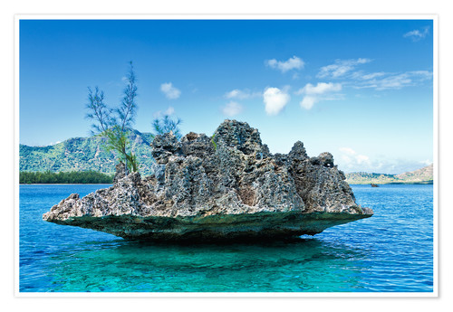 Póster Coral Rock, Mauritius