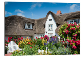 Cuadro de aluminio  Amrum - thatched house with flower garden - Reiner Würz