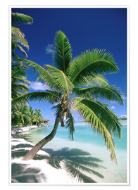 Póster  Aitutaki on Cook islands - Douglas Peebles