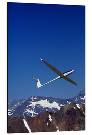 Cuadro de aluminio  Gliding over the snowy mountains - David Wall