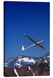 Lienzo  Gliding over the snowy mountains - David Wall