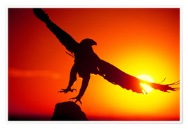 Póster  A golden eagle flies at dawn - Dave Welling