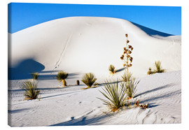Lienzo  White Sands National Monument - Transverse Dunes and Soaptree Yucca - Bernard Friel