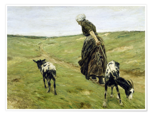 Póster Woman with goats in the dunes