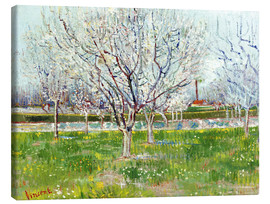 Lienzo  Blossoming orchard - Vincent van Gogh