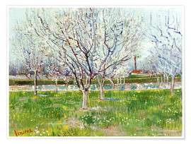 Póster Blossoming orchard