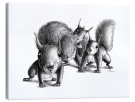 Lienzo  three squirrels - Stefan Kahlhammer