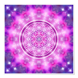 Póster  Flower of Life - Love Essence - Dolphins DreamDesign