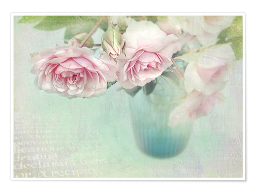 Póster pink roses