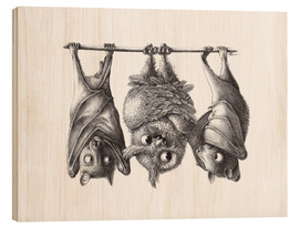 Madera  Vampire - Owl and Two Bats - Stefan Kahlhammer