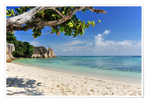 Póster Wonderful Beach of the Seychelles