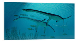 Cuadro de PVC  Three Plesiosaurus dinosaurs migrate with a school of fish. - Corey Ford