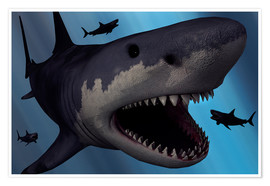 Póster  A Megalodon shark from the Cenozoic Era - Mark Stevenson