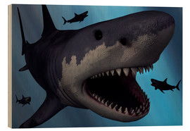 Cuadro de madera  A Megalodon shark from the Cenozoic Era - Mark Stevenson