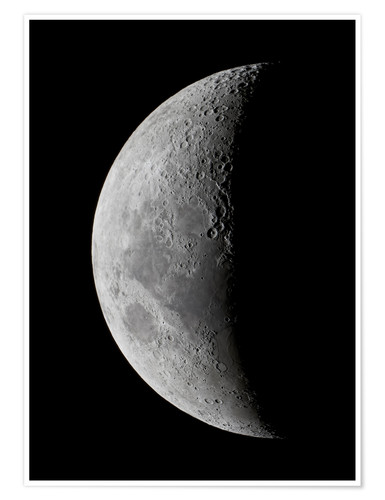 Póster The Crescent