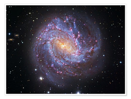 Póster The Southern Pinwheel Galaxy