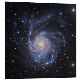 Cuadro de PVC  M101, The Pinwheel Galaxy in Ursa Major - Robert Gendler