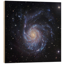 Cuadro de madera  M101, The Pinwheel Galaxy in Ursa Major - Robert Gendler