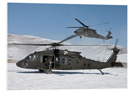 Cuadro de PVC  Two US Army UH-60 Black Hawk helicopter - Stocktrek Images