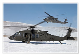 Póster Two US Army UH-60 Black Hawk helicopter