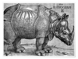 Póster The Rhinoceros