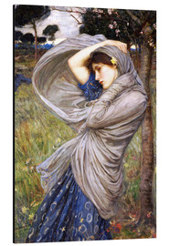 Cuadro de aluminio  Bóreas - John William Waterhouse