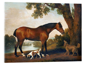 Cuadro de metacrilato  Horse and two dogs - George Stubbs