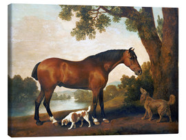 Lienzo  Horse and two dogs - George Stubbs