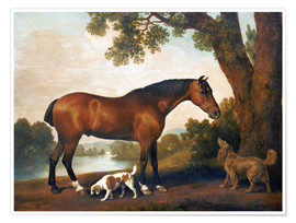 Póster  Horse and two dogs - George Stubbs