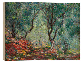 Madera  Olive Trees in the Moreno Garden - Claude Monet