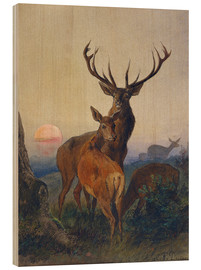 Cuadro de madera  A Stag with Deer at Sunset - Charles Jones