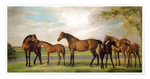Póster Mares, foals and an approaching storm