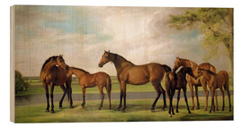 Cuadro de madera  Mares, foals and an approaching storm - George Stubbs