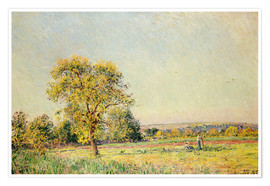 Póster  A Summer's Day, 1886 - Alfred Sisley