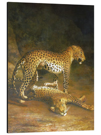 Cuadro de aluminio  Two Leopards lying in the Exeter Exchange - Jacques Laurent Agasse