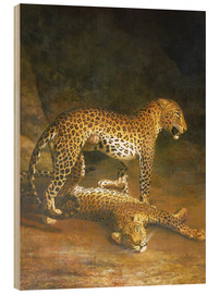 Madera  Two Leopards lying in the Exeter Exchange - Jacques Laurent Agasse