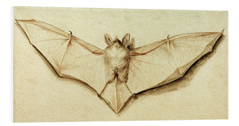 Cuadro de PVC  Bat with spread wings - Hans Holbein d.J.