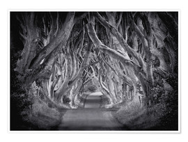 Póster  The Dark Hedges - Carsten Meyerdierks