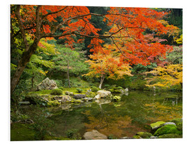 Cuadro de PVC  Japanese garden in autumn with red maple tree - Jan Christopher Becke
