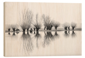 Cuadro de madera  Willow trees in the mirror image of the flood - Ingo Gerlach