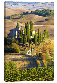 Lienzo  Belvedere House in San Quirico - Terry Eggers