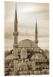 Metacrilato  the blue mosque in sepia (Istanbul - Turkey) - gn fotografie