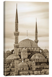 Lienzo  the blue mosque in sepia (Istanbul - Turkey) - gn fotografie